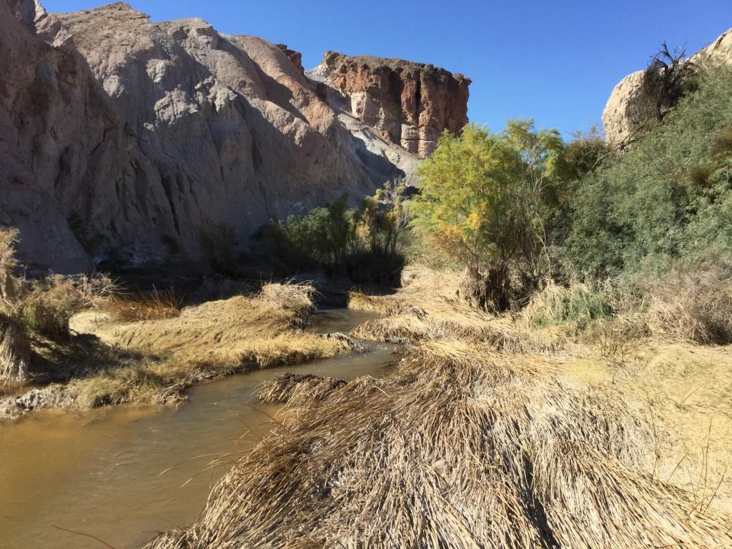 Groundwater Pumping Amargosa River