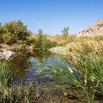 Tecopa Water Project - Amargosa Conservancy