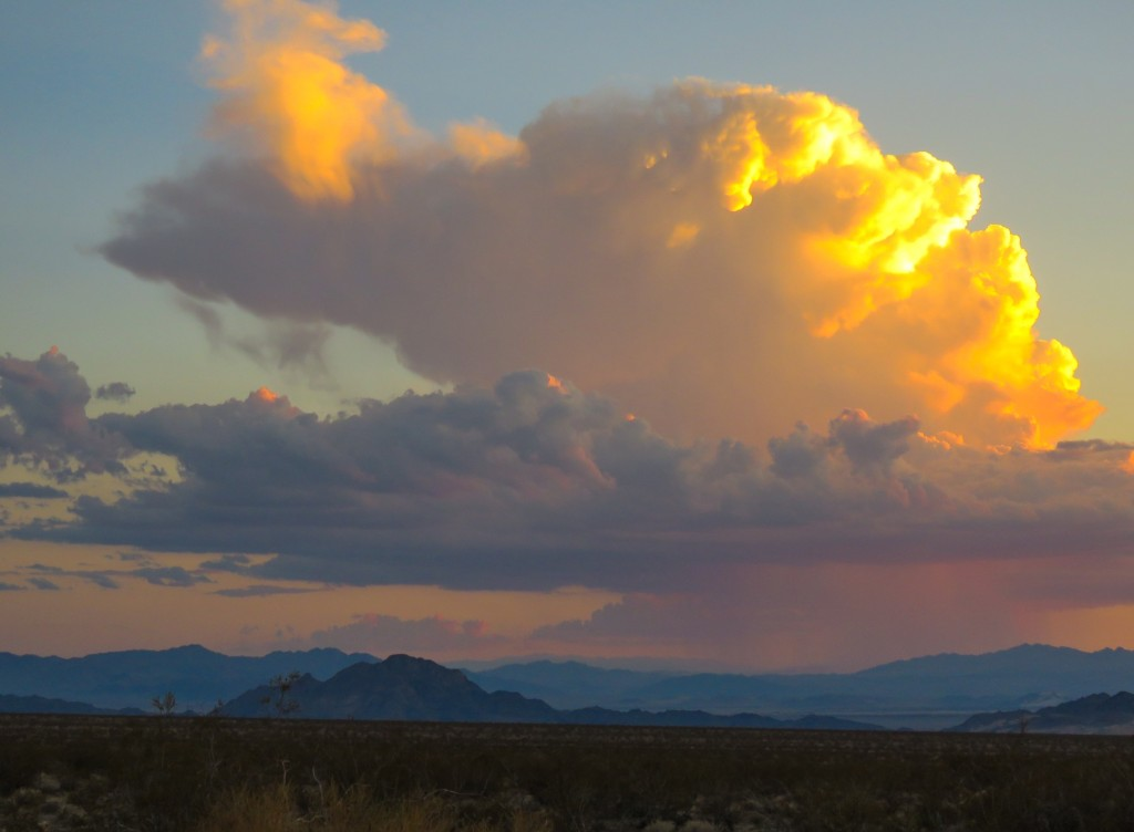 Mojave Trails Amargosa Conservancy