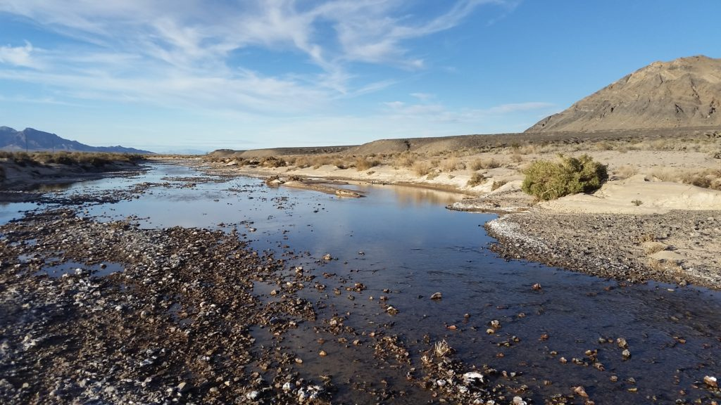 Amargosa Hide and Seek River