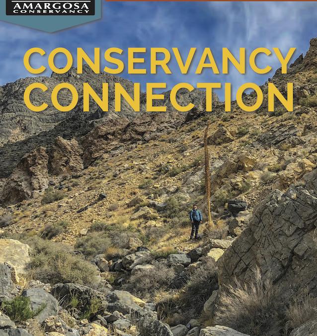 February 2019 Print Newsletter