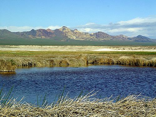 Amargosa Basin National Monument